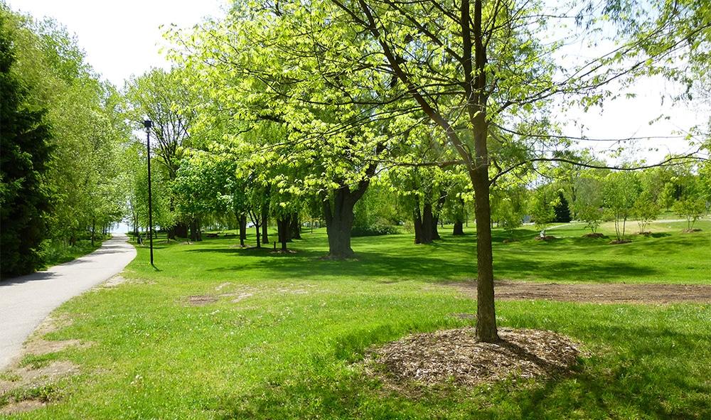 Jack Darling Park in Ontario, Canada