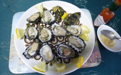 Yummy, Petite Albany Rock Oysters