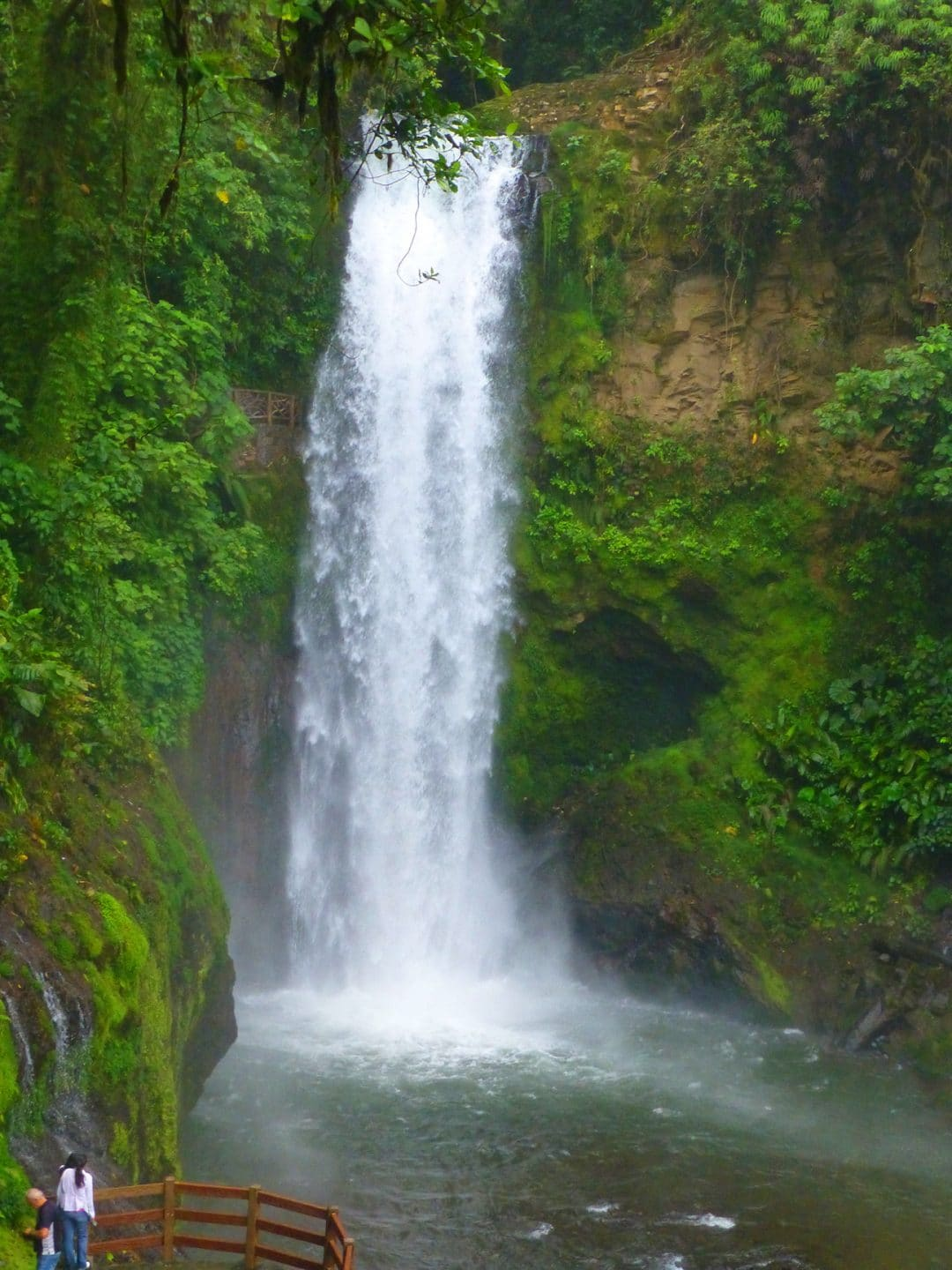 Magia Blanca Waterfall In La Paz Waterfall Gardens Vara Blanca Alajuela Costa Rica Our Best