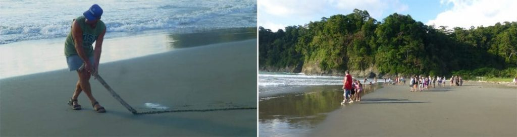 Sea Turtle Conservation, Costa Rica