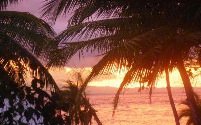 Top Four Tropical Travel Essentials