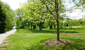 Jack Darling Park on Lake Ontario