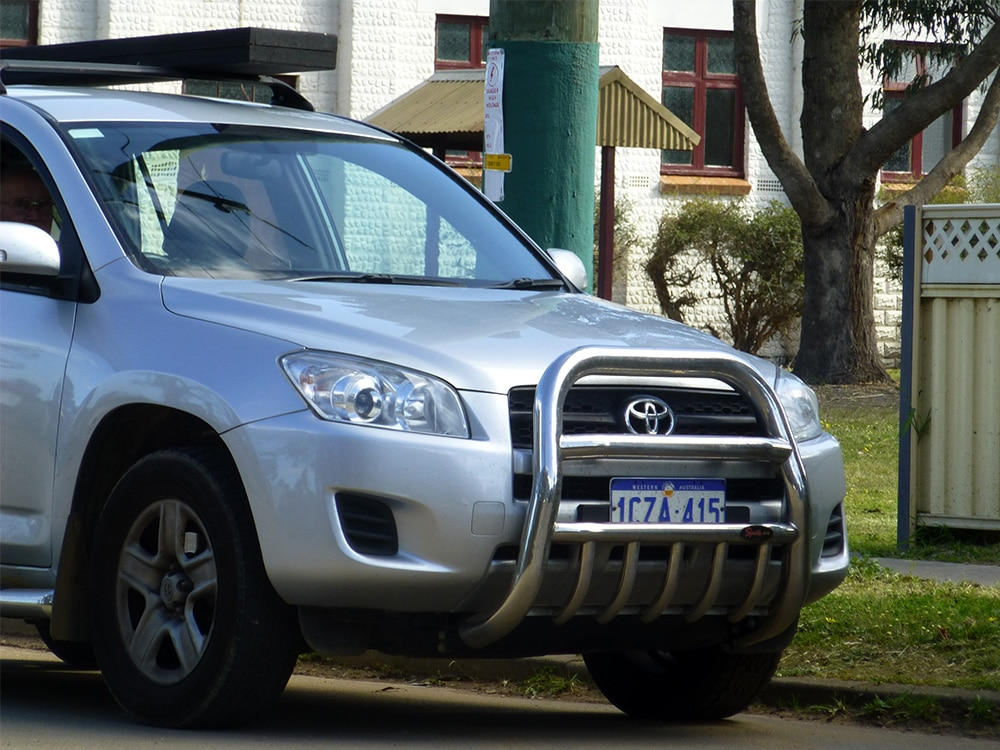 Roo Guard in Australia - Kangaroo protection?