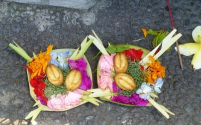 Bali Daily Offerings