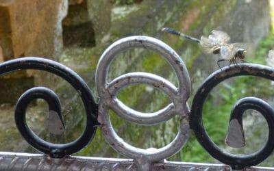 Dragonfly on Shrine Gate