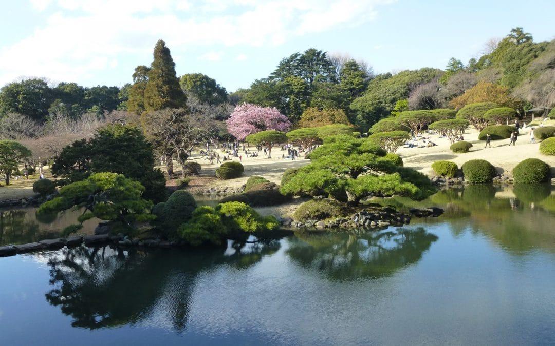 Shinjuku Gyoen National Garden, Tokyo, Japan