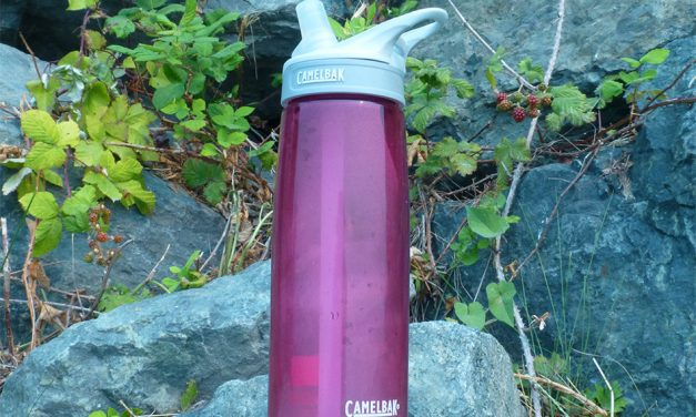 CamelBak Eddy Water Bottle