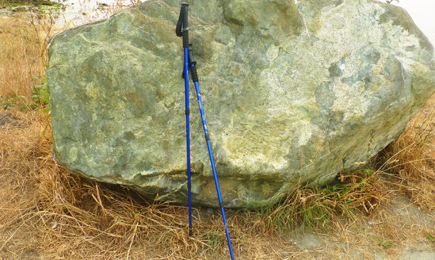 BAFX Products® Anti Shock Hiking/Walking/Trekking Trail Poles