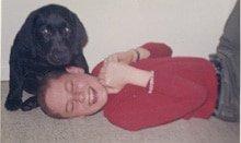 Labrador Retreiver Luv