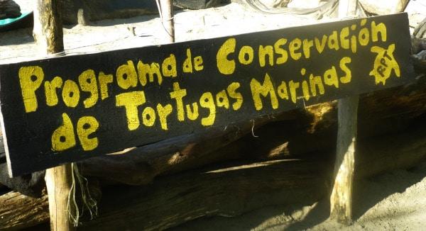 Programa de Conservacion de Tortugas Marinas