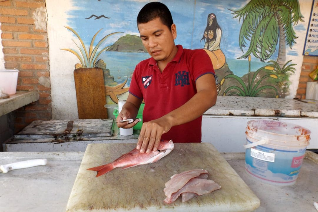 Filleting Local Red Snapper at the Pescadería in La Peñita del Jaltemba, Mexico